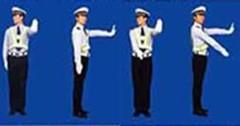 图中警察手势为___信号。